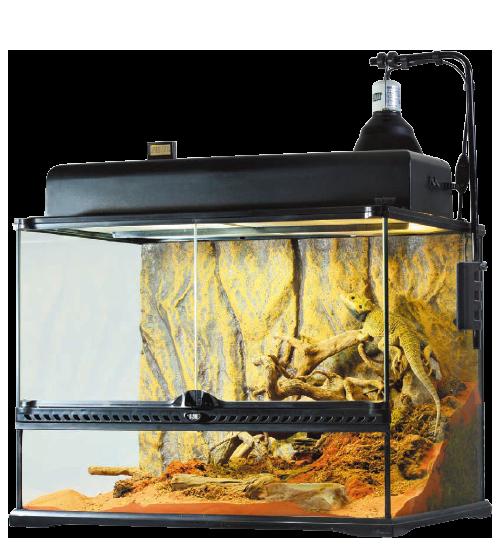 フトアゴヒゲトカゲ飼育セット例